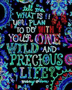 Wild & Precious Life 1 - Mary Oliver
