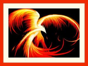 bxccbghzplhcgsrasumofm.com Phoenix Rising 2